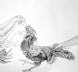"""Cock Fight"" by Dana Harel"